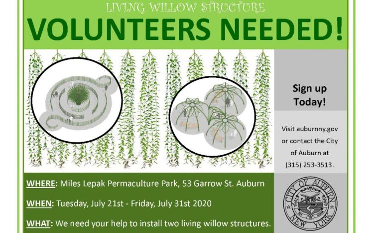 Living Willow Structure Call for Volunteers Flyer